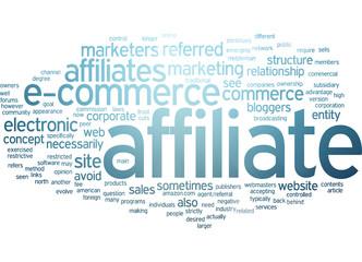 affiliate marketing / E-commerce