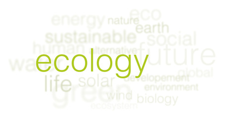 ecology background - 3d words cloud on white