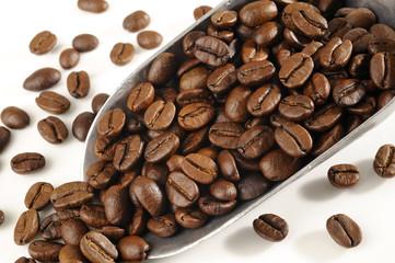 Coffee beans in metal scoop