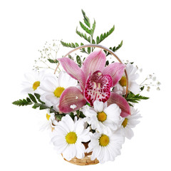 Fresh bouquet with daisy and orchid