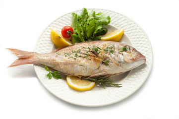 grilled red snapper with salad isolated on white