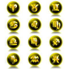 Zodiac glossy icons