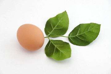 A brown egg with three leafs.