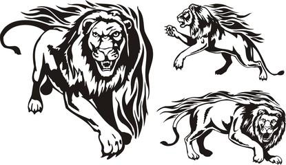 Three lions. Flaming big cats.