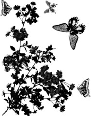 four black butterflies and cherry tree