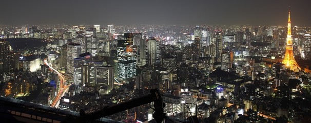 Illuminated Tokyo City in Japan at night from high above