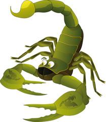 Nice scorpion