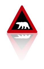 Watch out! Polar bears