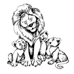 lionceaux, vecteur