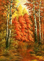 Autumn wood landscape with birches