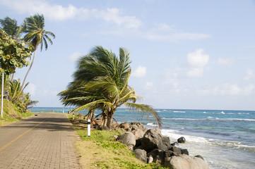 malecon by caribbean sea corn island nicaragua