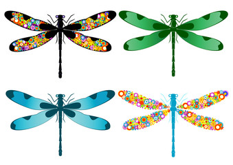 four dragonflies isolated on a white background