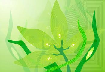 zielona abstrakcja