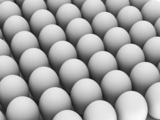 Row of white eggs
