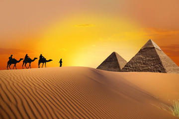 Wall Murals Egypt Pyramid, camel and sunset