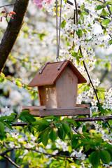 Bird house in the spring garden