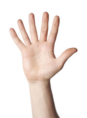 6 fingers