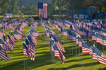 Eleven hundred American flags on park lawn