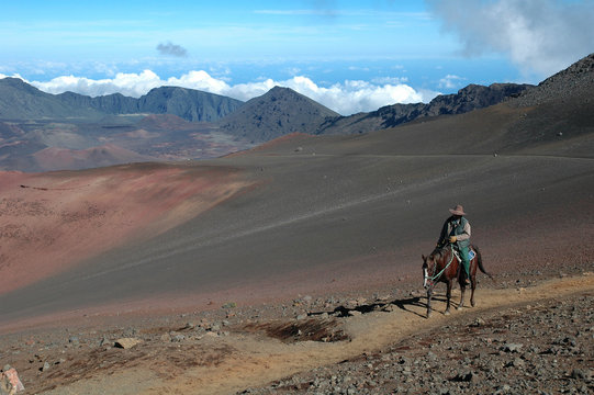Lone Horseman In Desert Volcano