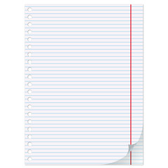 Empty sheet of paper from a notebook