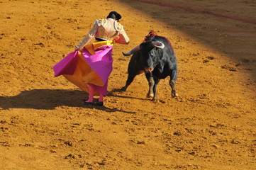 Poster de jardin Corrida Torero et taureau, avec la cape tournoyant
