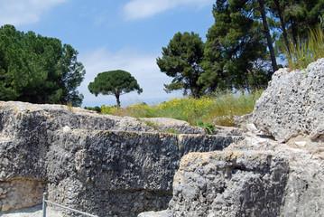 Entrance of the Archeological Park of Syracuse, Sicily