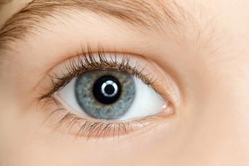 right blue eye of child with long eyelashes close up