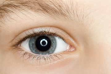 right blue eye of child with long eyelashes close up