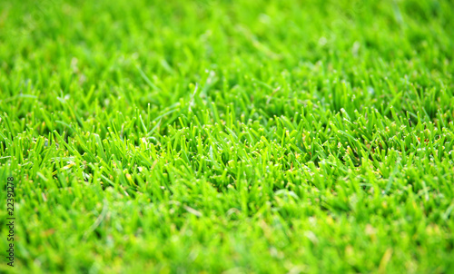 gr ner fu ball rasen green soccer grass stockfotos und. Black Bedroom Furniture Sets. Home Design Ideas