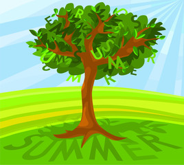 Picture of a summer tree