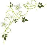 maigl ckchen blumen bl te ranke filigran floral stockfotos und lizenzfreie vektoren auf. Black Bedroom Furniture Sets. Home Design Ideas