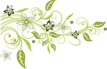 Blumen, Blüten, Ranke, Blätter, floral, filigran, grün