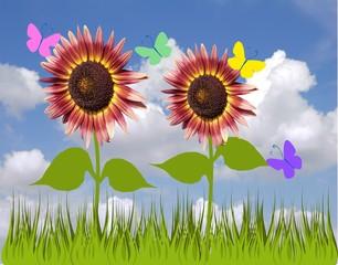 girasoli e farfalle