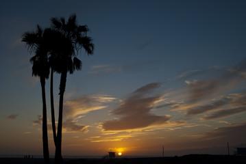 venice beach sunset 10 of 13