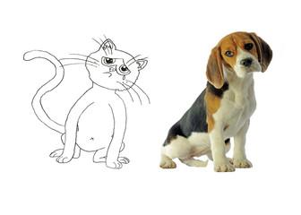 chien et chat ensemble au regard triste