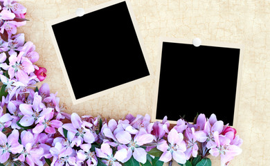Floral Background with Blank Photos