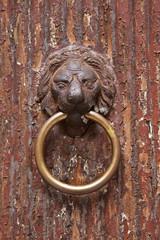 Old Lion Head Door Knocker, Venice, Italy