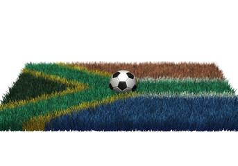 Fussball, WM 2010