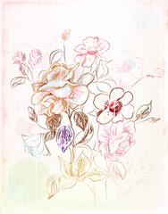 vintage sketch of the flowers