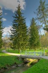 Wooden bridge in beautiful park