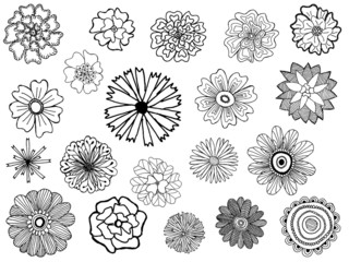 set of cute vector doodle flowers