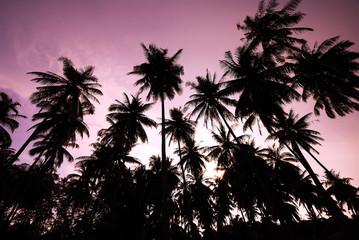 kood island, Trat Thailand
