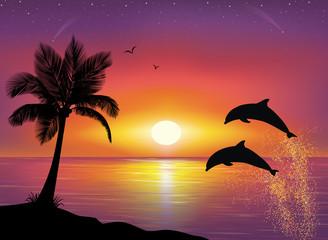 Fond de hotte en verre imprimé Dauphins Dolphins.