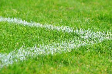 Fußball Ecke Rasen - Soccer Grass