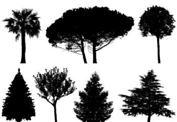 trees - vector set