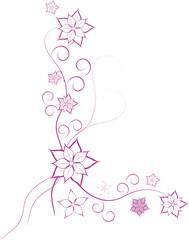 rosa blumen ranke