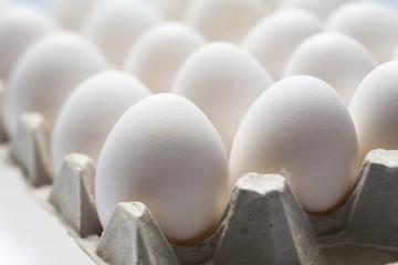 much white eggs