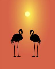 Silhouette of a flamingo