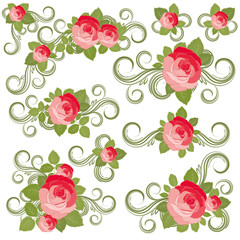 Roses collection, vector illustration.