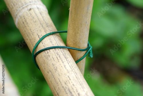 Barrière en bambou\